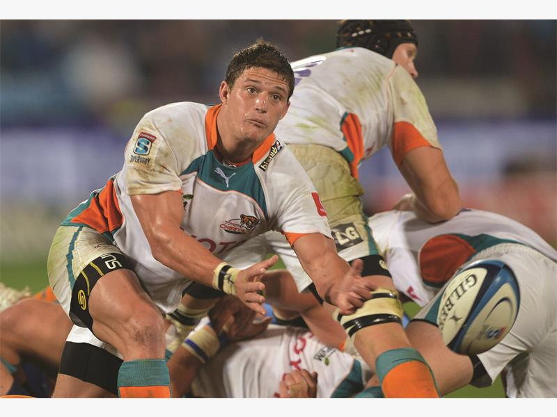 BIG FISH. Cheetahs scrumhalf Piet van Zyl will join the Blue Bulls after the Currie Cup. Picture: Backpagepix