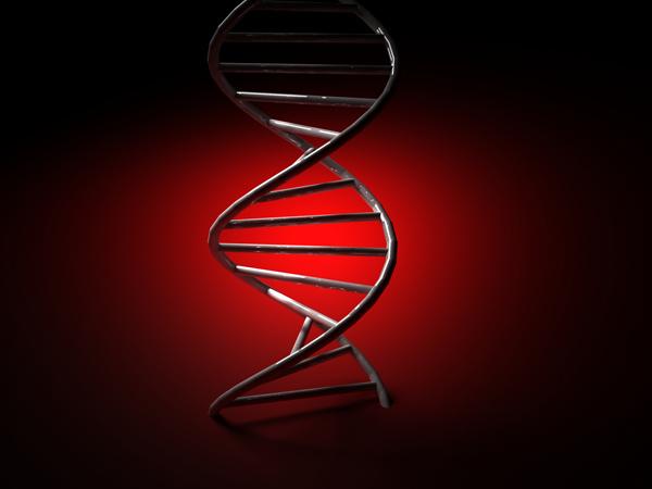 Scientists make major genetic breakthrough