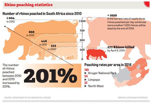 rhino stats
