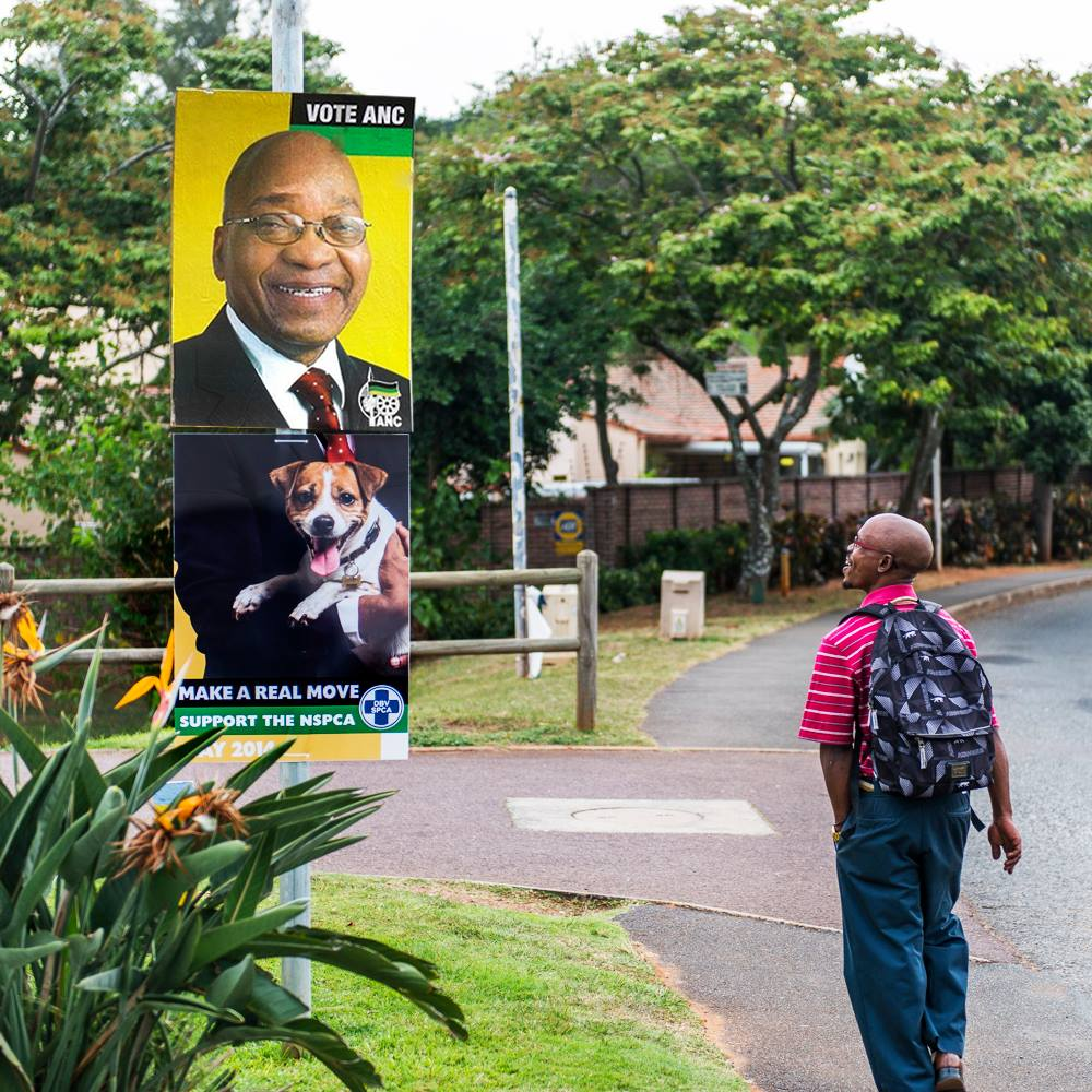 A pedestrian smiles at the NSPCA 'election poster' that was put up in Durban on Tuesday. Image courtesy facebook.com/NSPCA