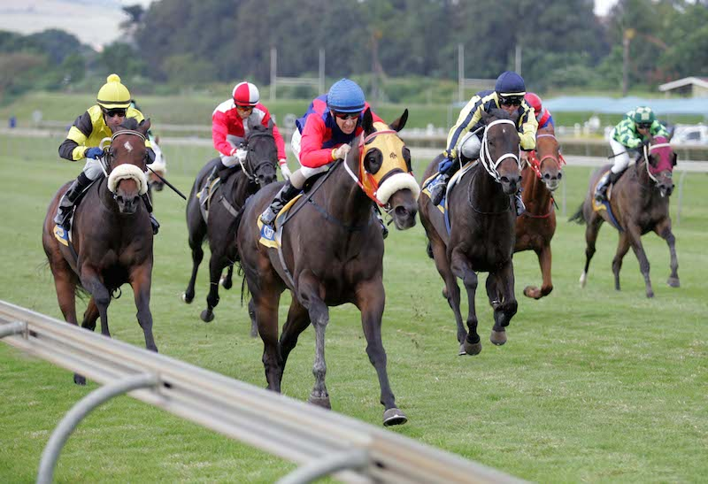 Anton Marcus has elected to ride German Lady in Race 3 at Greyville today.