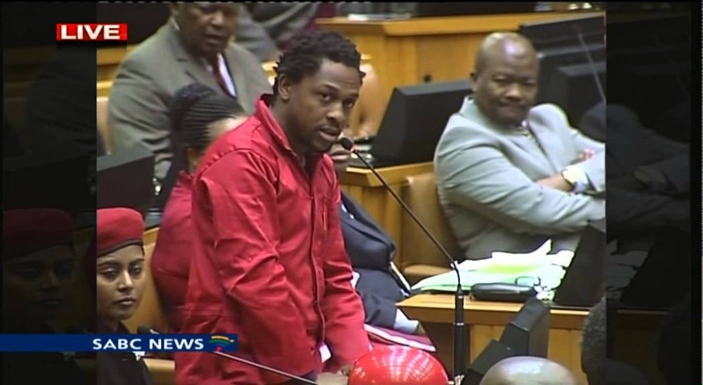 Parly committee resumes probe into EFF disruption