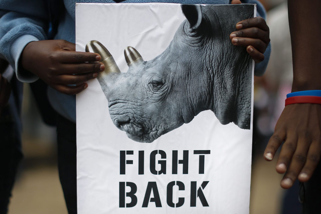 FILE PICTURE: A participant with a placard at the Global March for Elephants and Rhinos on World Animal Day, Nairobi, Kenya. Picture: EPA