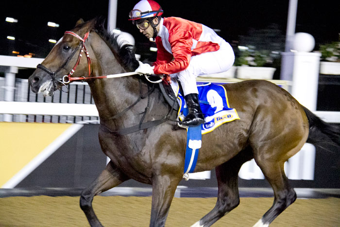 Crevasse, who runs in Race 5 at Greyville tonight, stands  out as a possible Pick 6 banker.