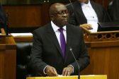 Nene's budget strikes balance – economist