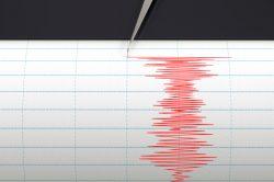 Earth tremor shakes KZN