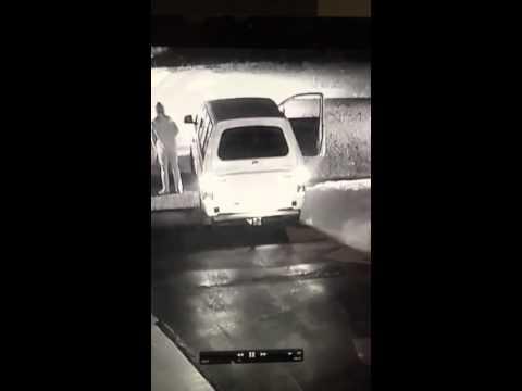 A screenshot of the video.