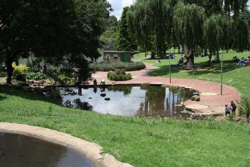 Rhodes Park. Picture: Joburg East Express.