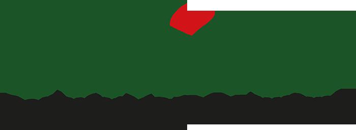 Calisto's-Portuguese-Restaurant-CURVES