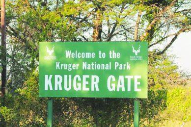 UK tourists in hospital after Kruger crash