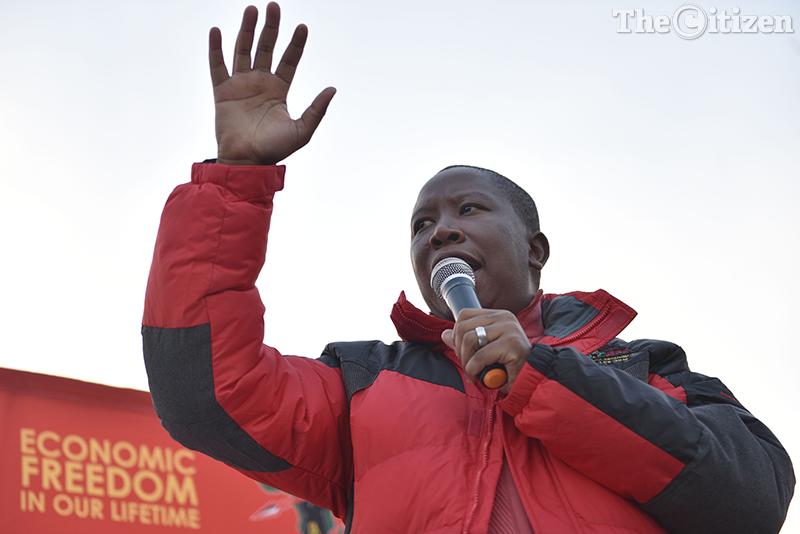 FILE PICTURE: EFF commander in chief Julius Malema.  Picture: Tracy Lee Stark