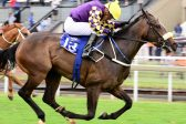 The Smell Of Rain looks the best banker on today's Turffontein card