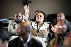 Thoko Didiza murder rumours 'appalling'
