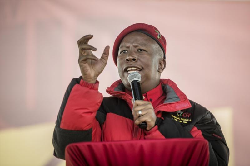 Economic Freedom Fighters (EFF) leader; Julius Malema. File photo: Gallo Images / Beeld / Cornel van Heerden