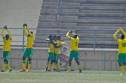Five star Bafana rout Swaziland in Cosafa Cup