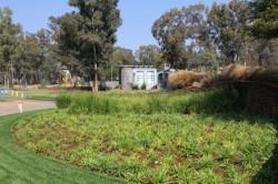 Golf estate kicks Joburg South into gear