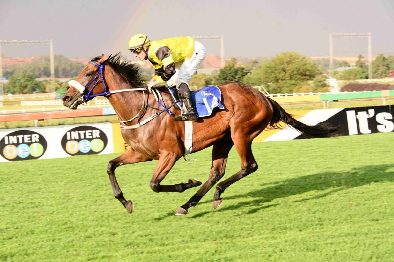 BEST BET: Zafira, who runs in Race 5 at Turffontein today, is Piere Strydom's suggestion as a banker in all bets.