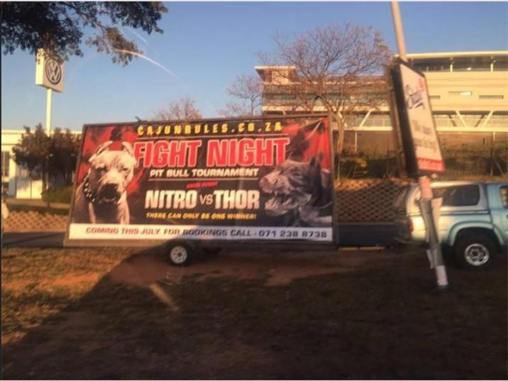 The pitbull ad. Picture: Randburg Sun
