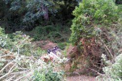 Woman survives 30 metre plunge down embankment