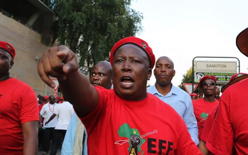 EFF leader Julius Malema. Photo: Supplied