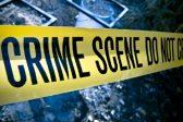 Stop wanton farm murders – Saptu, Fedusa