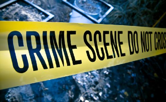 DA condemns brutal farm attack in Gauteng