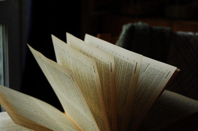 Lowveld Book Festival is taking place this weekend. Photo: Lowvelder