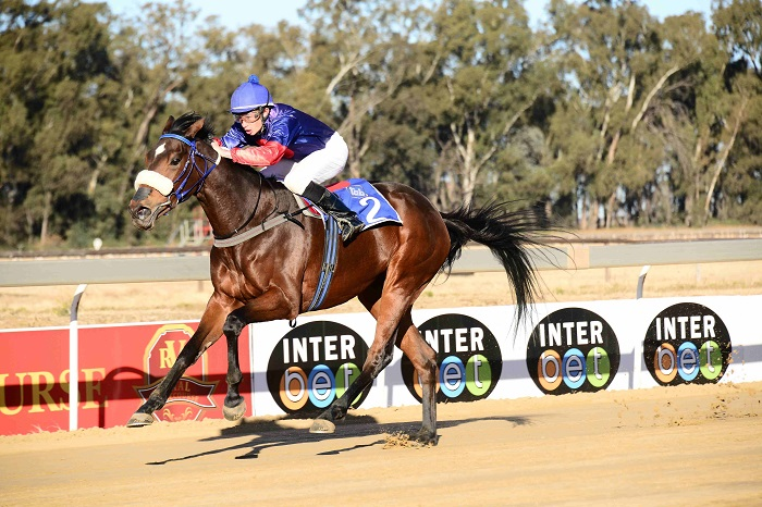 COURSE SUITED. Lady Of Kildare loves the Polytrack and could be the best of Sean Tarry's trio in Race 5 at Greyville today.