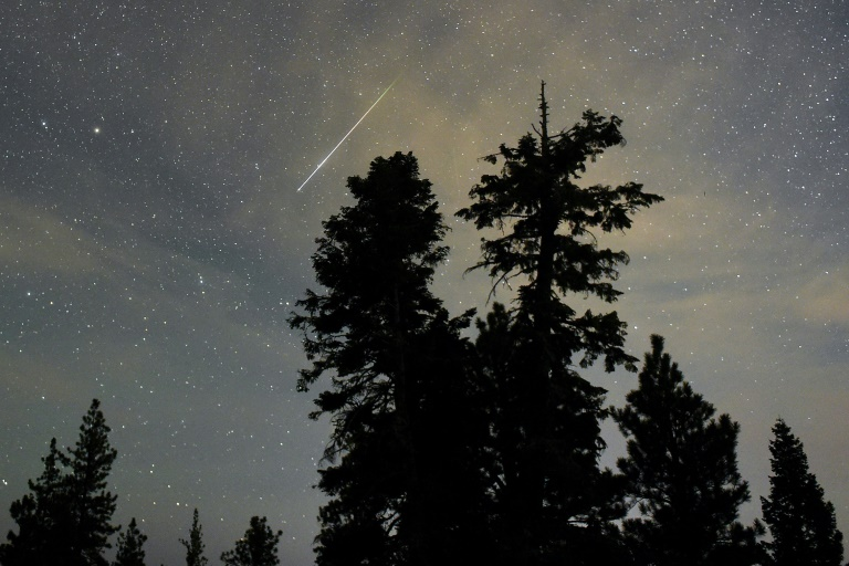 Getty/AFP/File / Ethan Miller<br />A Perseid meteor streaks across the sky above desert pine trees in the Spring Mountains National Recreation Area in Nevada, on August 13, 2015