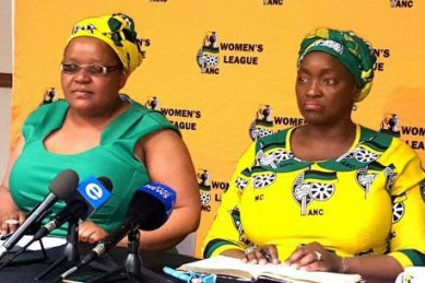 'Autonomous' ANCWL can meet with Zuma whenever they want, says ANC