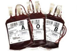 Blood shortage not caused by #FeesMustFall protest, says SANBS