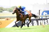 Change of course is likely to suit Danza