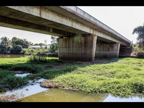 The Letaba River's water at the bridge foundation is blocked by plant material. Picture: Letaba Herald.
