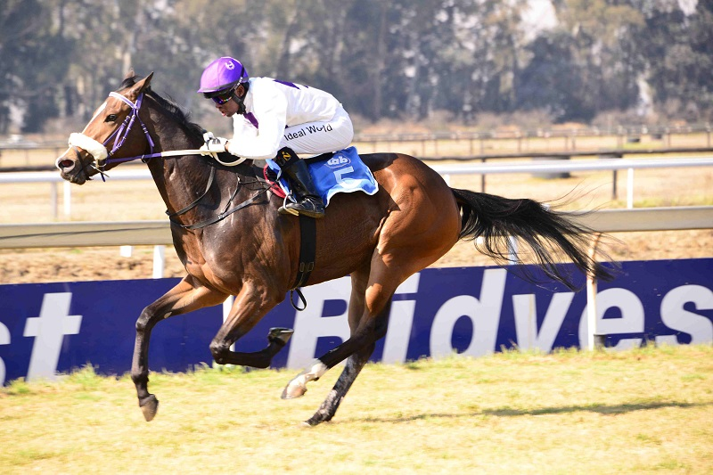 Wrecking Ball looks to have a big future and is expected to notch up her third win when she runs in Race 5 over 1000m at the Vaal today.