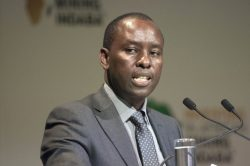 Zwane insists he has backing for banking sector probe