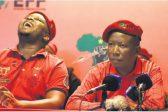 Malema joins in to make fun of 'Mini-Madiba' Maimane