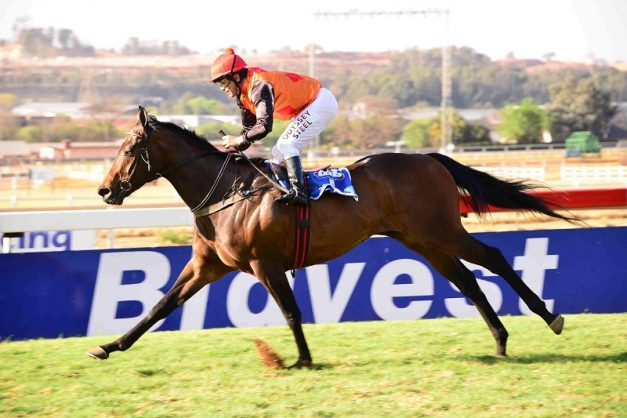 The handicappers reckon Kangaroo Jack, pictured winning the 1200m Spring Spree on the Turffontein Inside Track, is the best horse in this Saturday's Joburg Spring Challenge.