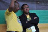 EFF leaders blast Dubai based Fikile Mbalula for prioritising 'leisure' over work