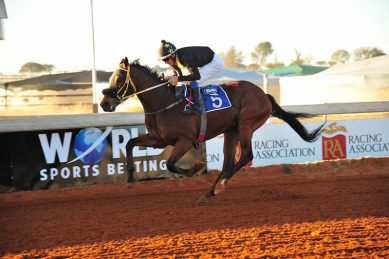 Kimberley's Flamingo Park Racecourse to stop operating later this year