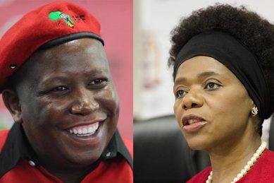 EFF Monday mayhem: Ndlozi tells Madonsela to go to hell