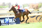 Search on for Cape feature rides