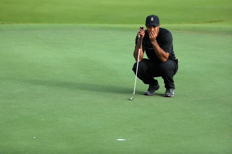 Long road back: Tiger Woods ponders a putt during the first round of the Hero World Challenge - his return to competitive golf. Photo: Christian Petersen/Getty Images