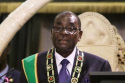 'Grandpa' Mugabe must let go, says Malema