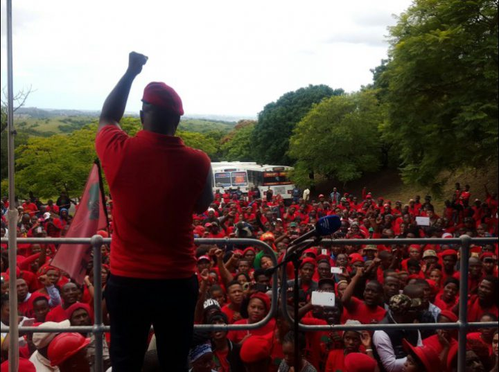 Picture: EFF Official Twitter account