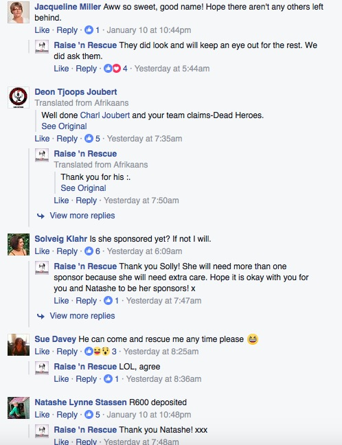 A screenshot of the comments on the Raise 'n Rescue Facebook post. Picture: Facebook