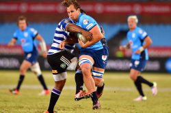 Province run in nine tries in 57-14 rout against Free State