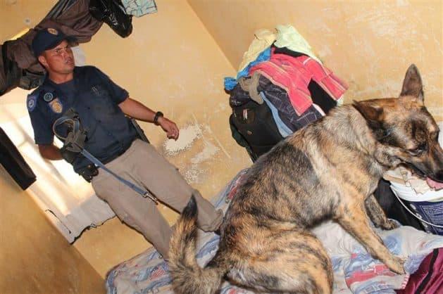 Drug dealers, créche children share same toilets