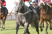 Grand Series to be decided at the Vaal on 8 December