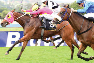 Jockey hit with R60K fine after controversial dead-heat win