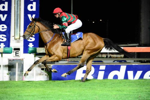 Luca Delago has a light weight, is well drawn and is Piere Strydom's Pick 6 banker in Race 8 at Turffontein today.